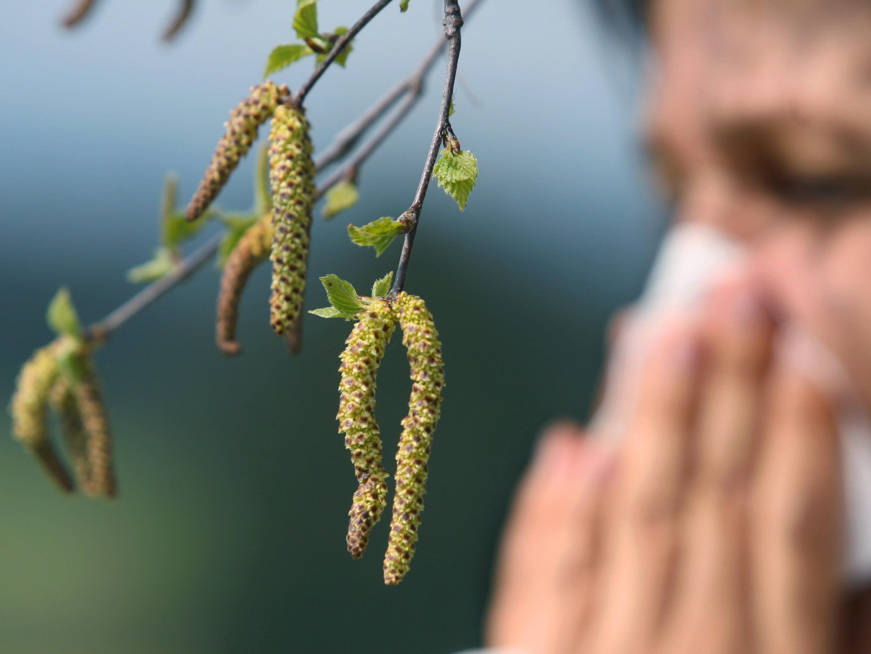 Hilfreiche Tipps gegen Allergien