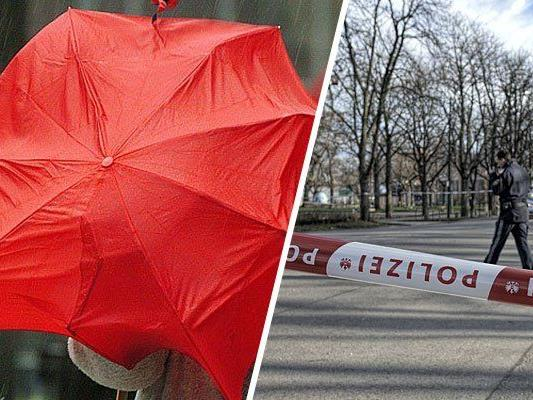Für Wien wurde ein Temperatursturz und Sturm prognostiziert