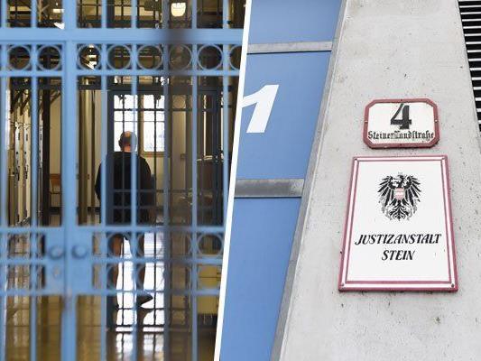 Verwahrloster Häftling: Volksanwaltschaft prüft Verfahrenseinstellung