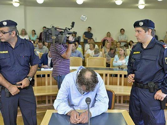 Der Angeklagte beim Mordprozess in Wien