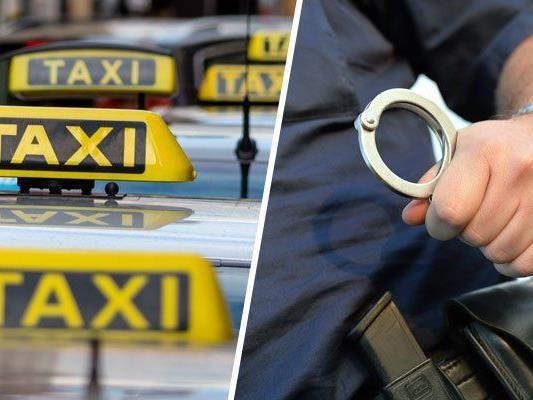 Ein Taxilenker und ein Radfahrer verfolgten den Geldbörsendieb.