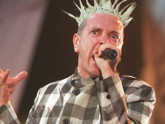 Punk-Legende als Kunstfan
