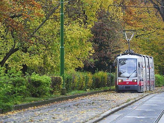 Eine Straßenbahn der Linie 58 im Bereich Hadikgasse, wo auch der Unfall geschah