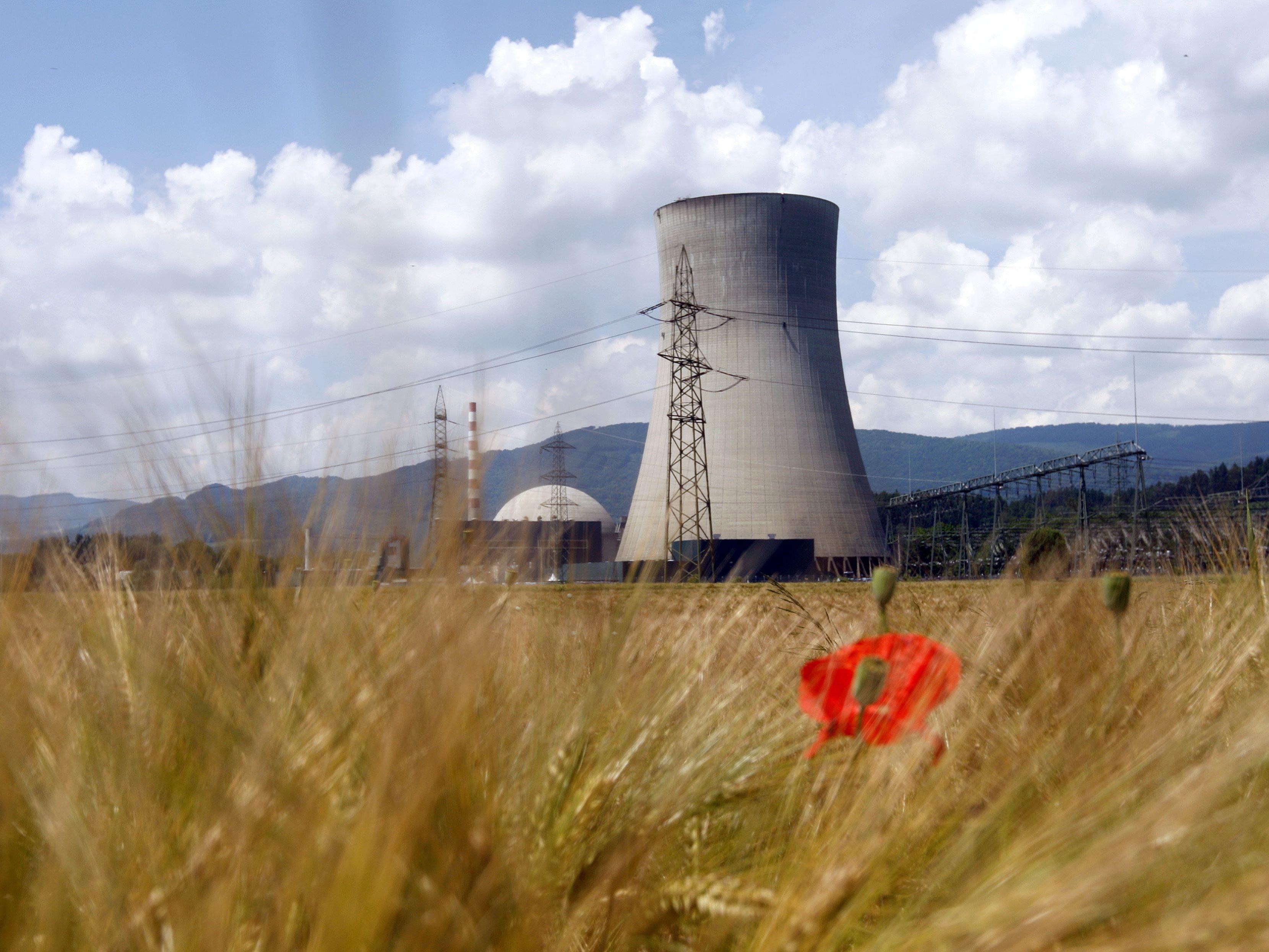 """Reaktor in Gösgen außerplanmäßig abgeschaltet - """"Keine Gefahr""""."""