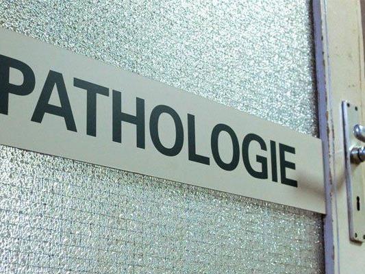 Auszeichnung für Wiener Pathologen.