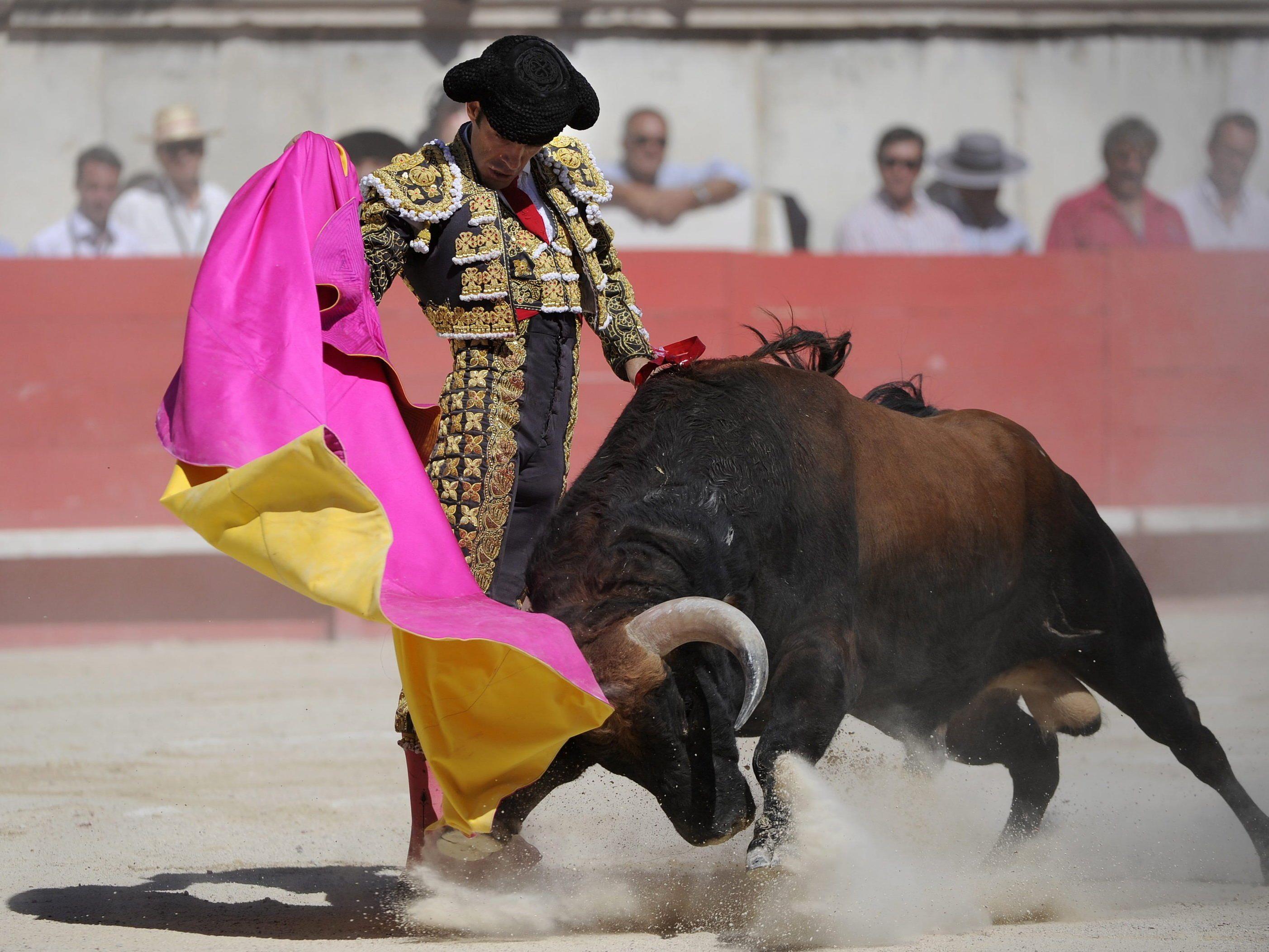 Keine Stierkämpfe mehr in Palma de Mallorca