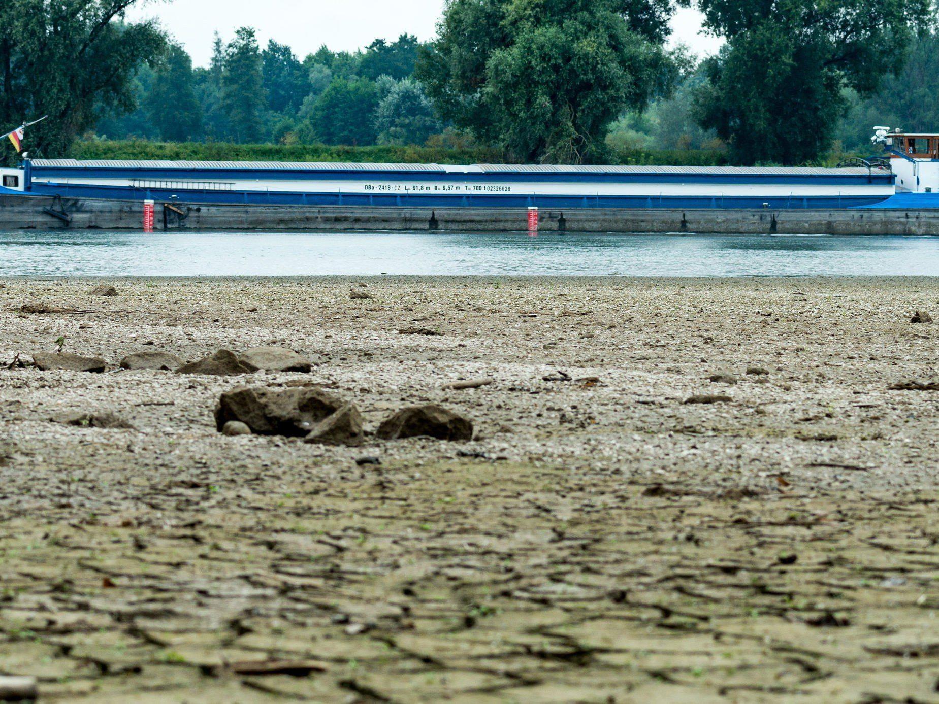 Die Trockenheit sorgt für eine angespannte Situation bei der Donauschifffahrt.