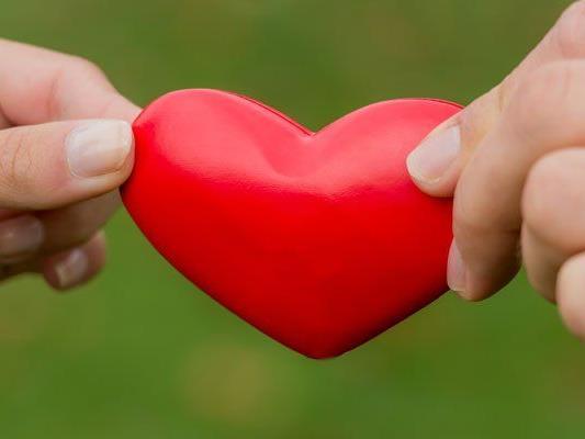 Partnersuche bei LoveScout24 | Singles finden in sterreich