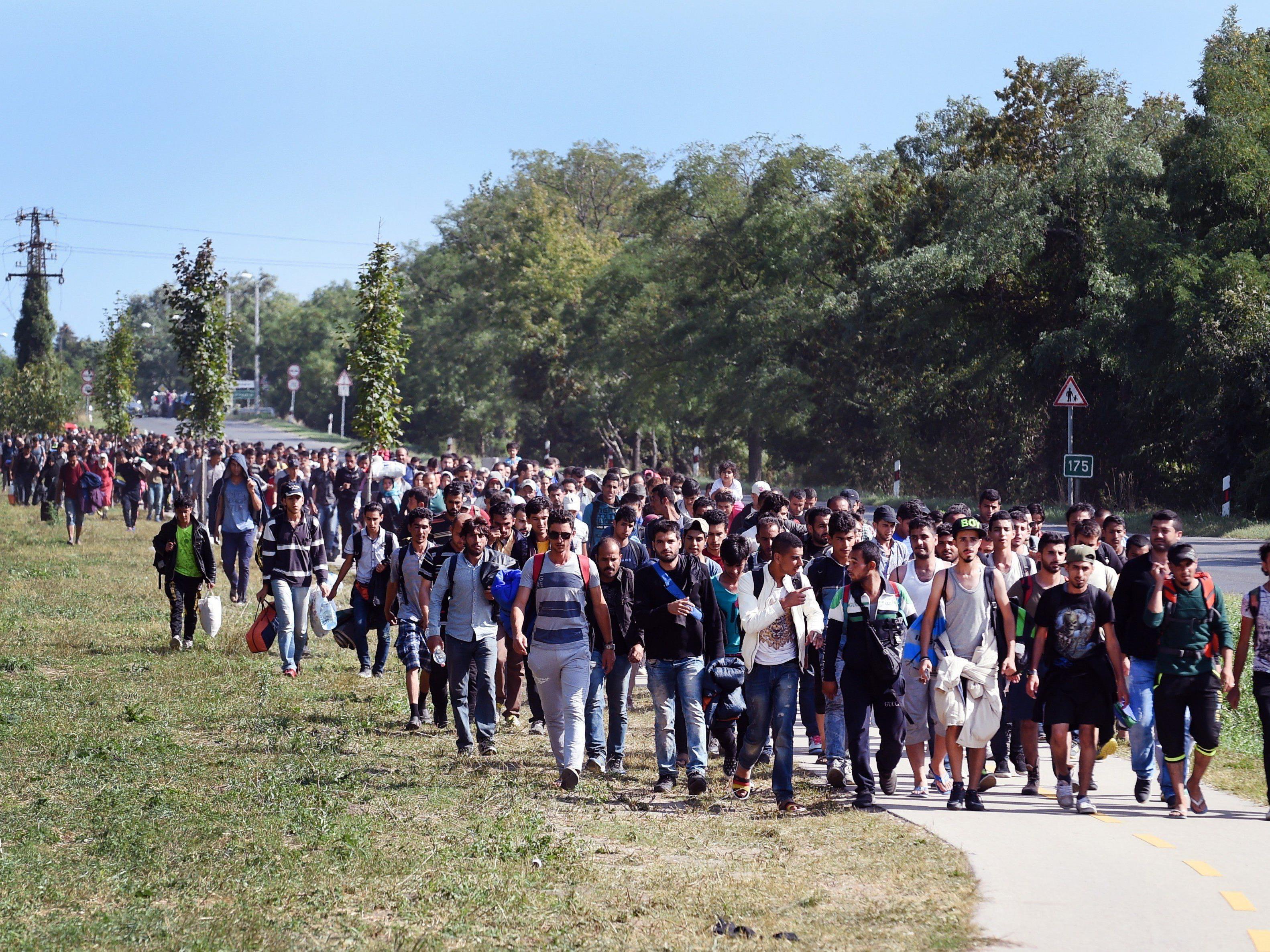 Flüchtlinge in Ungarn auf dem Weg in Richtung Westen.