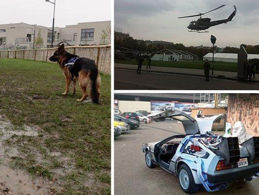 Eine völlig unbrauchbare Hundezone, Helikopter über dem Heldenplatz und ein DeLorean vor dem Saunaclub