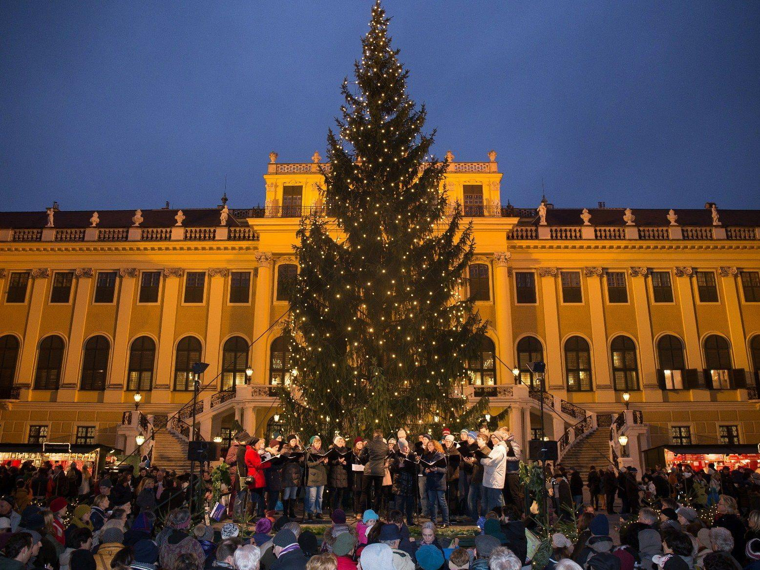 Der traditionelle Weihnachtsmarkt vor dem Schloss Schönbrunn.