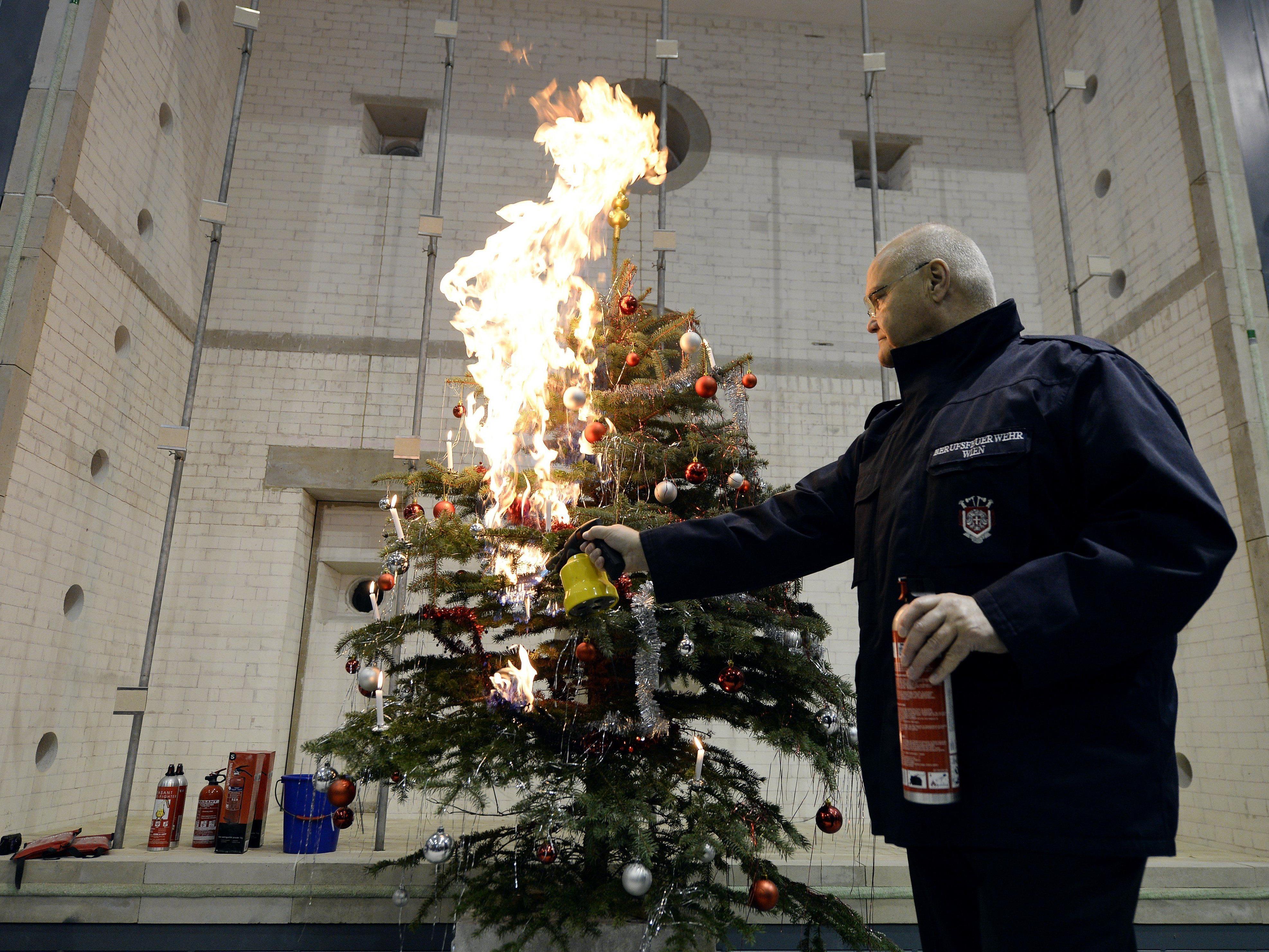 Sicherheitstipps: Auch ein Christbaum kann brandgefährlich sein ...