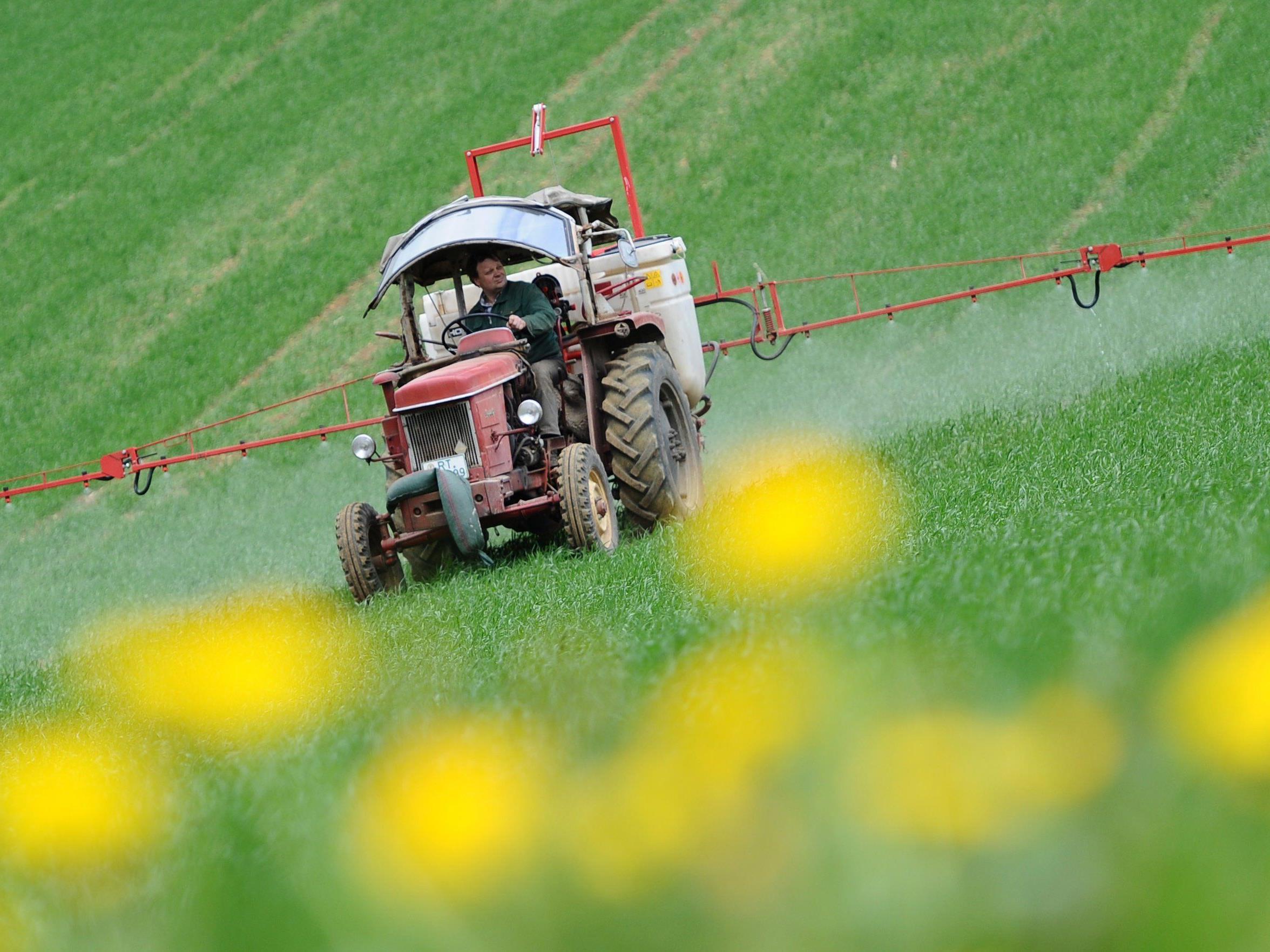 Glyphosat: Wissenschaftler kritisieren Bewertung von EU-Behörde scharf.