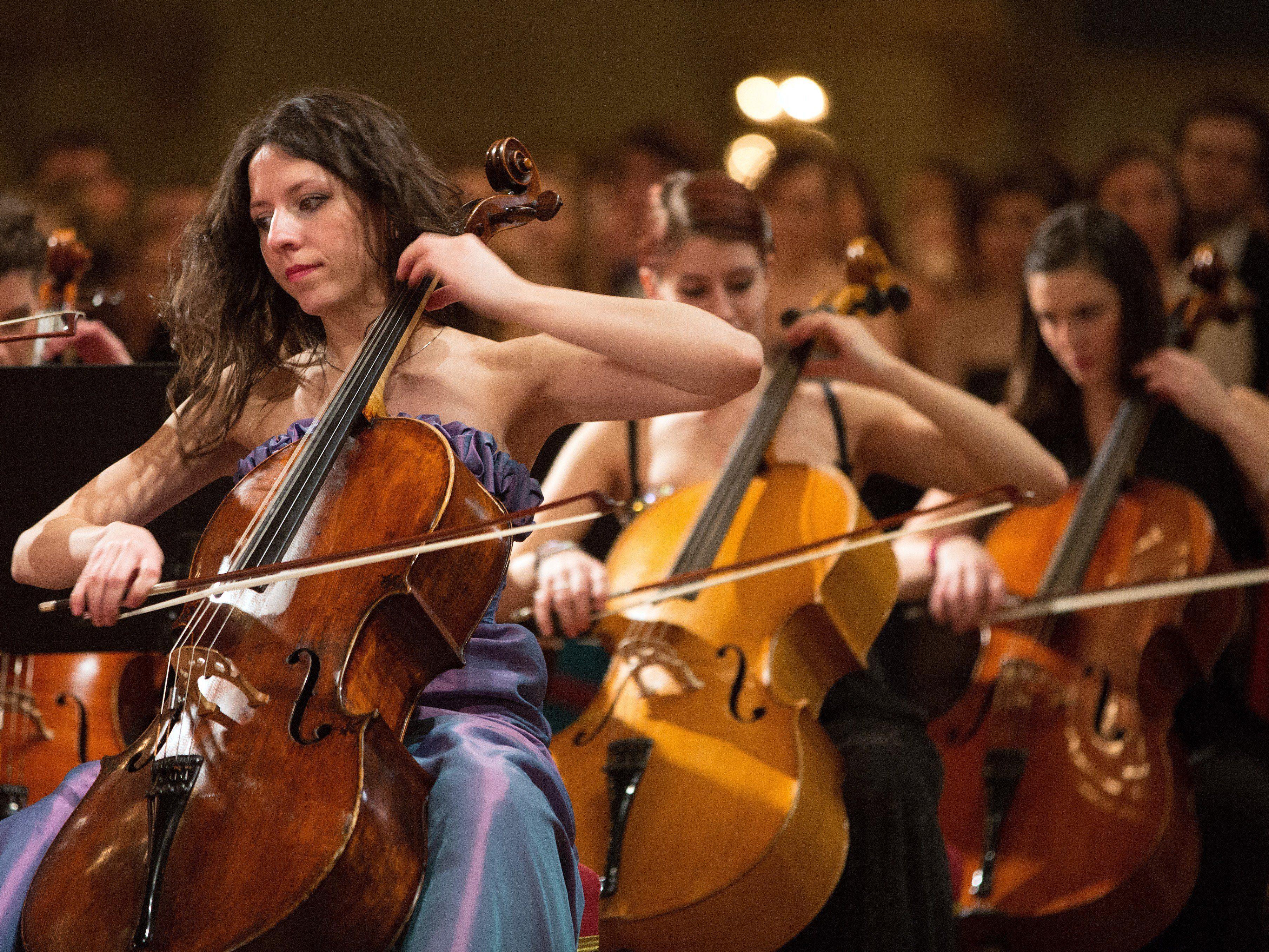 Der Ball der Wissenschaften findet am 30. Jänner in Wien statt.
