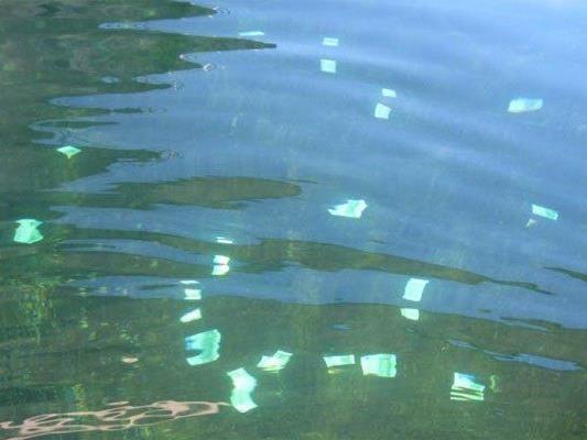 In der Neuen Donau wurde eine große Menge von Geldscheinen gefunden