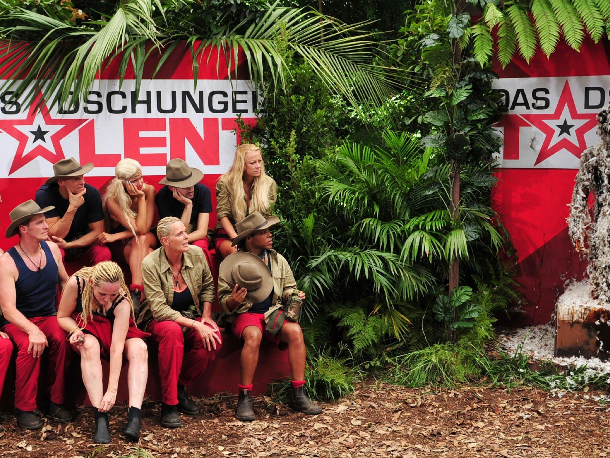In der Dschungelprüfung erkämpften Helena und Daniel acht Sterne.