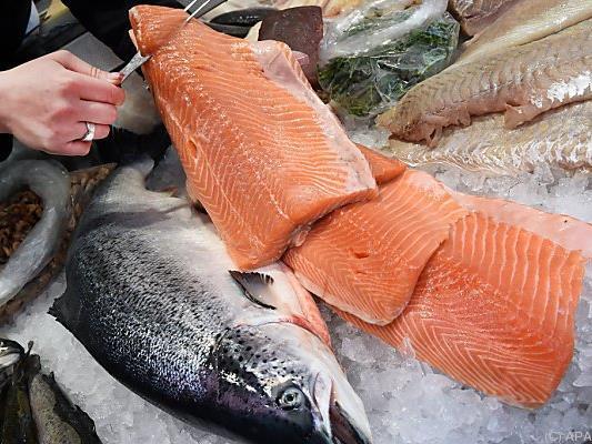 Vorsicht beim Fischkauf: Greenpeace warnt vor Umweltschäden
