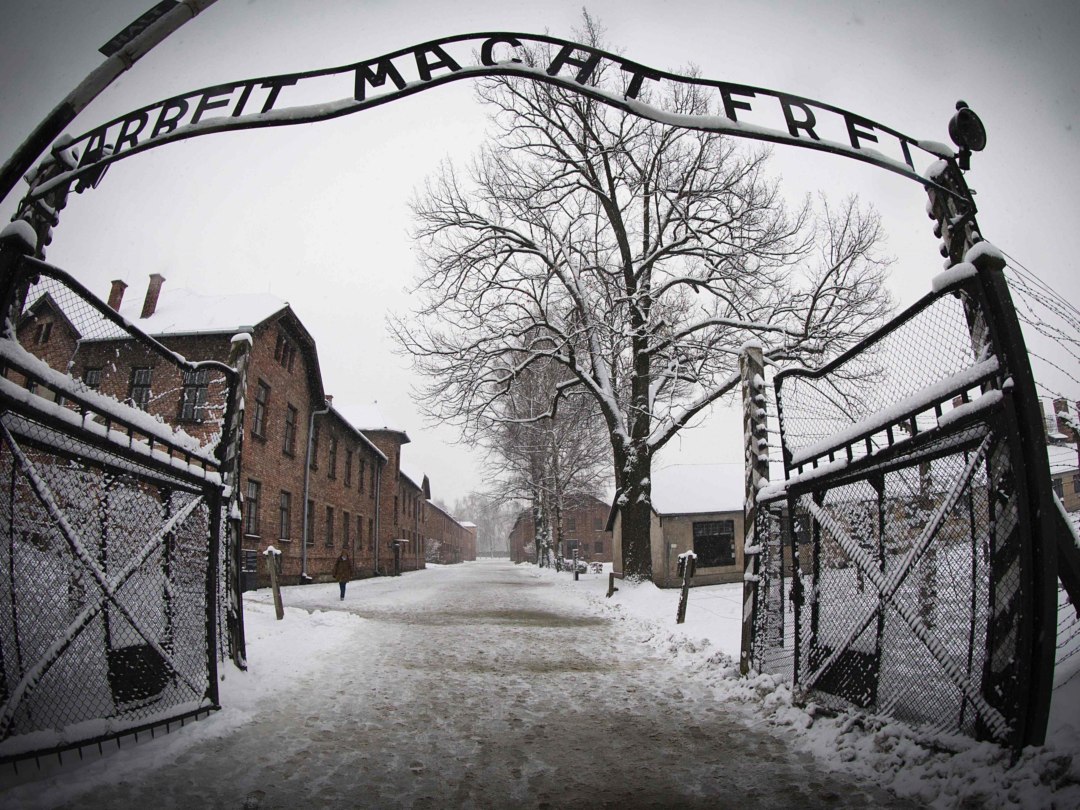 Holocaust-Gedenktag am 27. Jänner 2016.