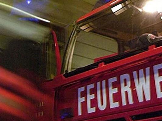 Die Wiener Berufsfeuerwehr löschte den Brand. Trotzdem entstand an dem Auto Totalschaden.