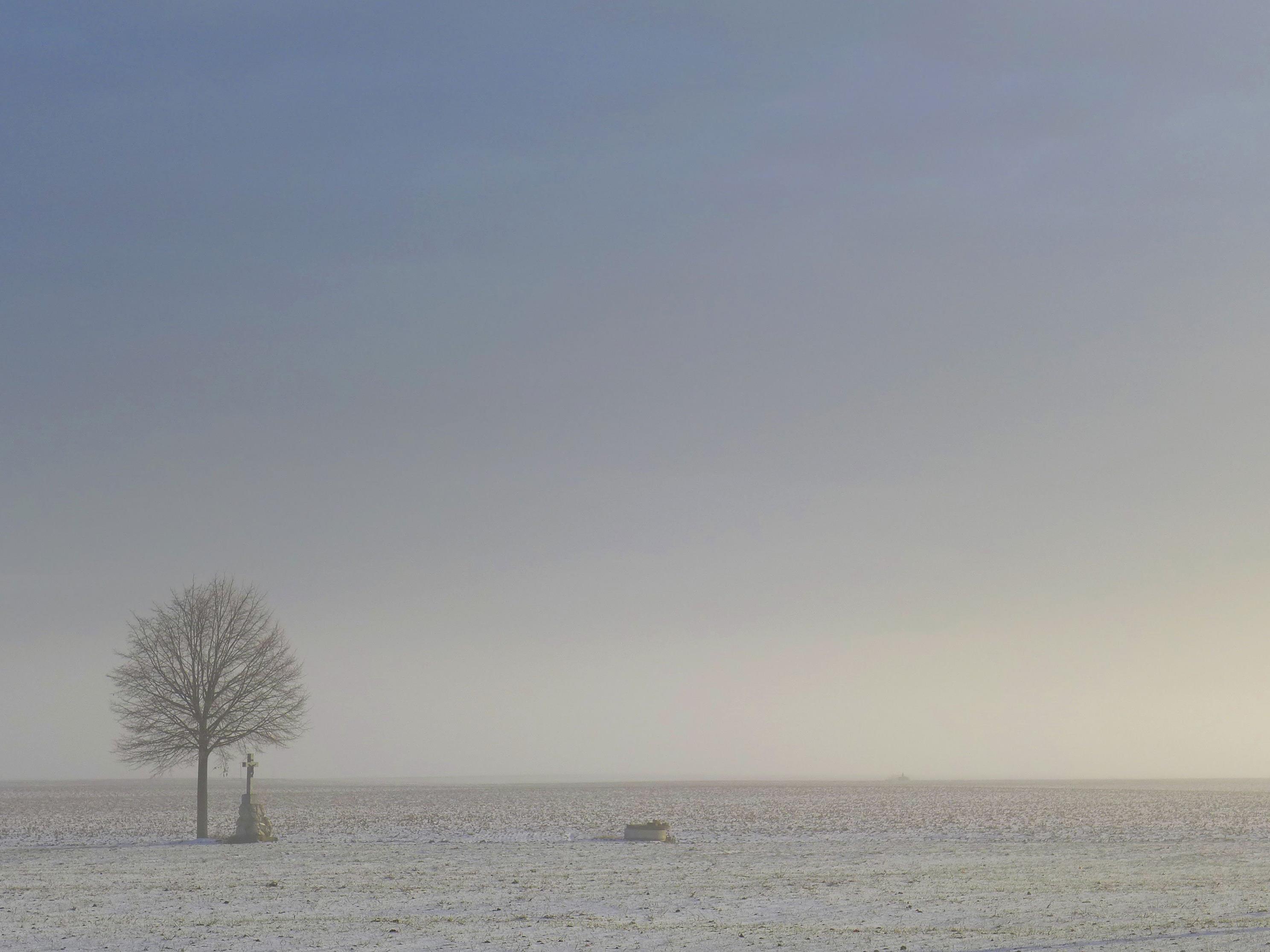 In vielen Teilen Österreichs ist es frostig.