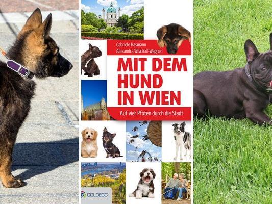 Das Buch ist ein Must-Have für alle Hundefreunde, die die Stadt gemeinsam mit ihrem Vierbeiner erkunden möchten.