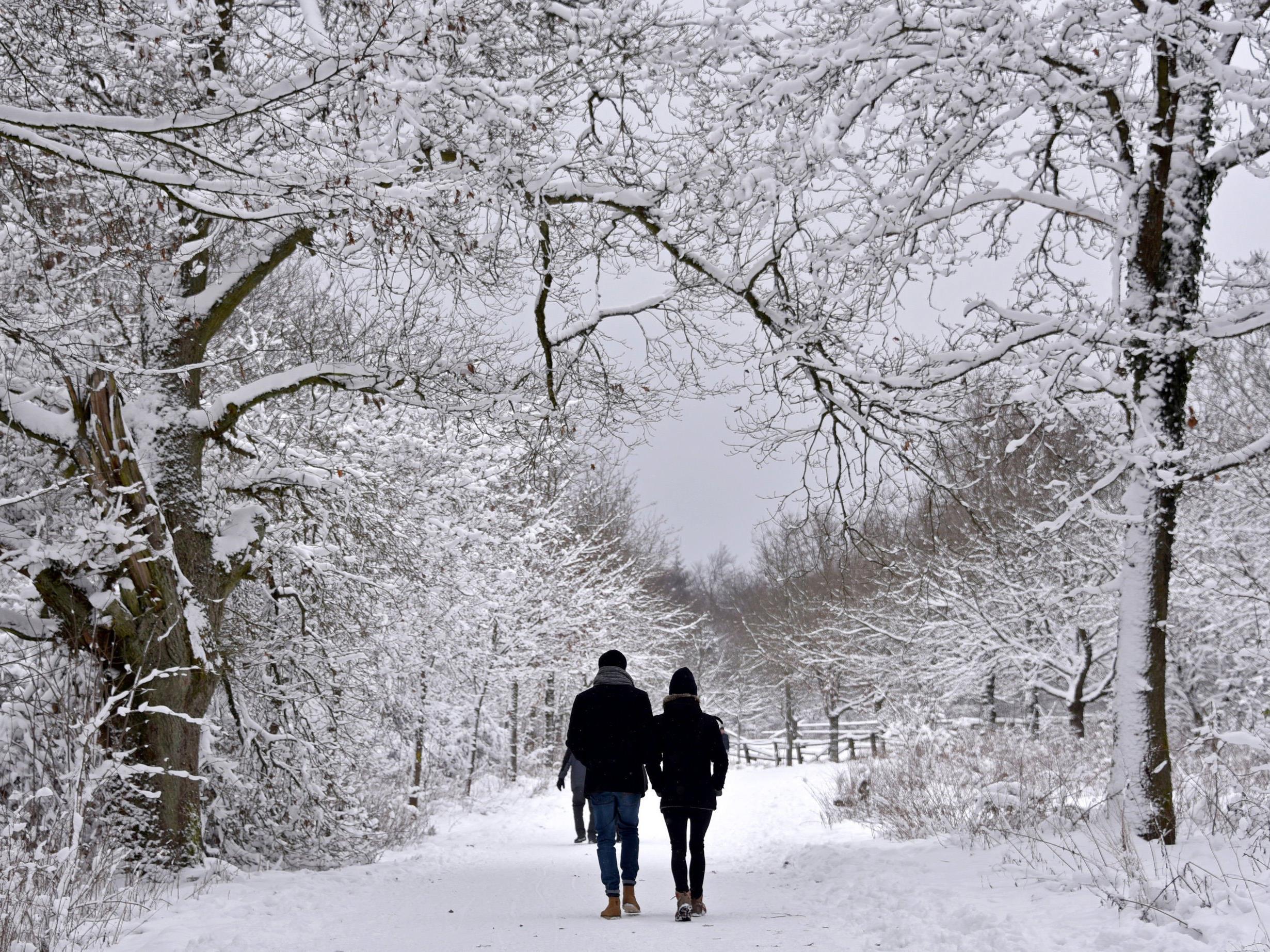 Der Winter kehrt für sehr kurze Zeit zurück.