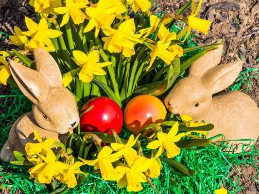 Zu Ostern gibt es viele Bräuche. Wir haben die wichtigsten im Überblick.
