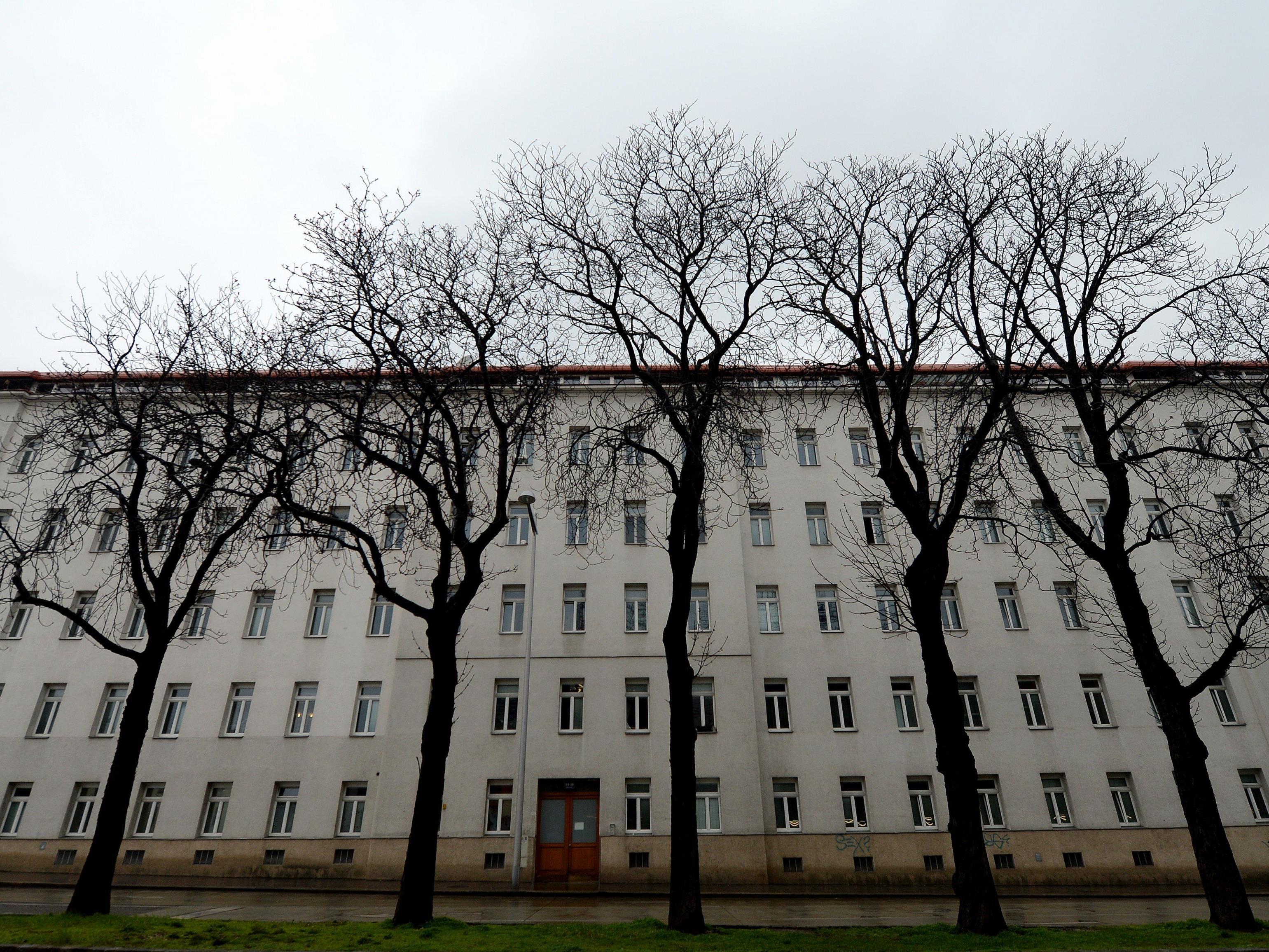 Baby und Mutter tot aufgefunden - Von Wiener Jugendamt betreut