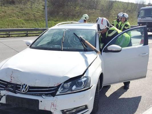 Kaum zu glauben: Der Pkw-Fahrer blieb unverletzt.