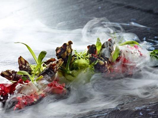 Am 31. März startet wieder das Wachau Gourmet-Festival.