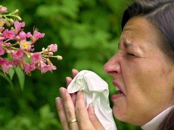 Wenn der Frühling vor allem eines verspricht: Niesanfälle und tränende Augen.