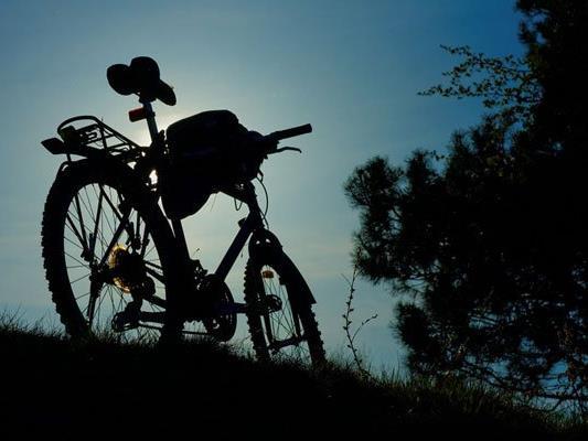 Neuer Hotspot für Mountainbiker im Wienerwald.