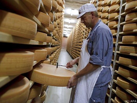 Der prähistorischen Käseherstellung auf der Spur