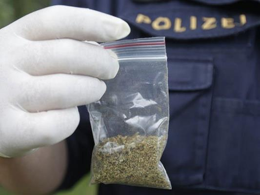 Einer der Männer hatte gleich mehrere Kilo Cannabis bei sich.