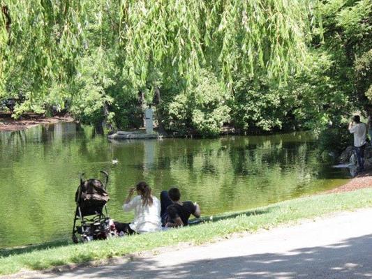 Wiens ist mit seinen vielen Parkanlagen eine sehr grüne Stadt.