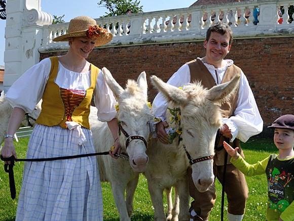 Die vierbeinigen Bewohner des Gutshofs laden zur tierischen Parade auf Schloss Hof