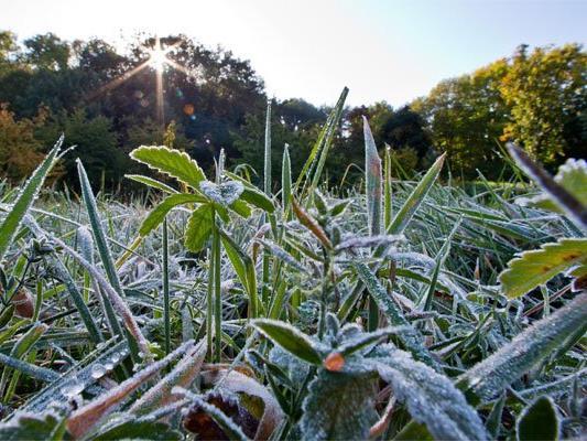 Nach den frostigen Temperaturen kommt die Sonne wieder durch.