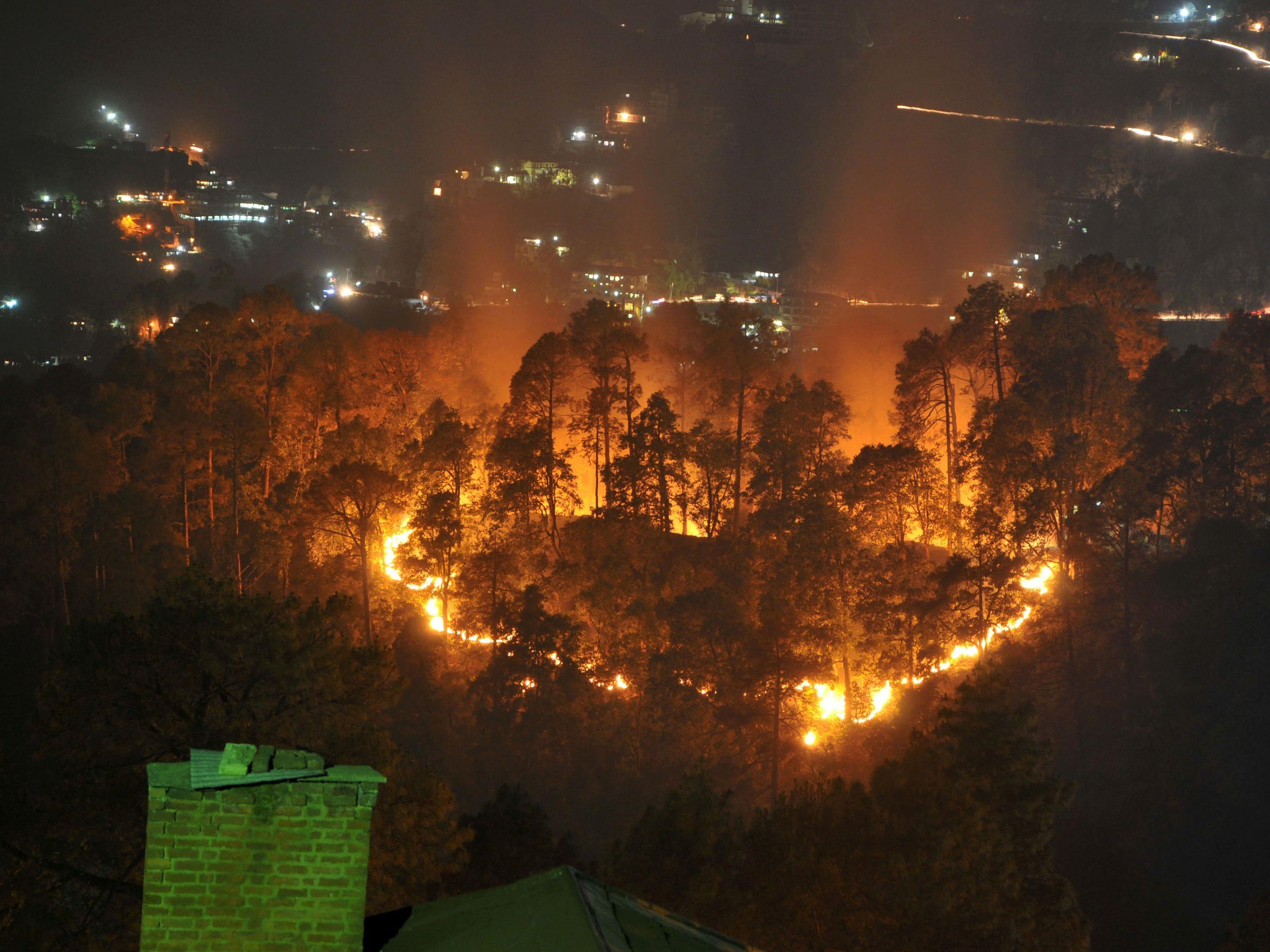 Die Waldbrände bedrohen ein UNESCO-Welterbe.