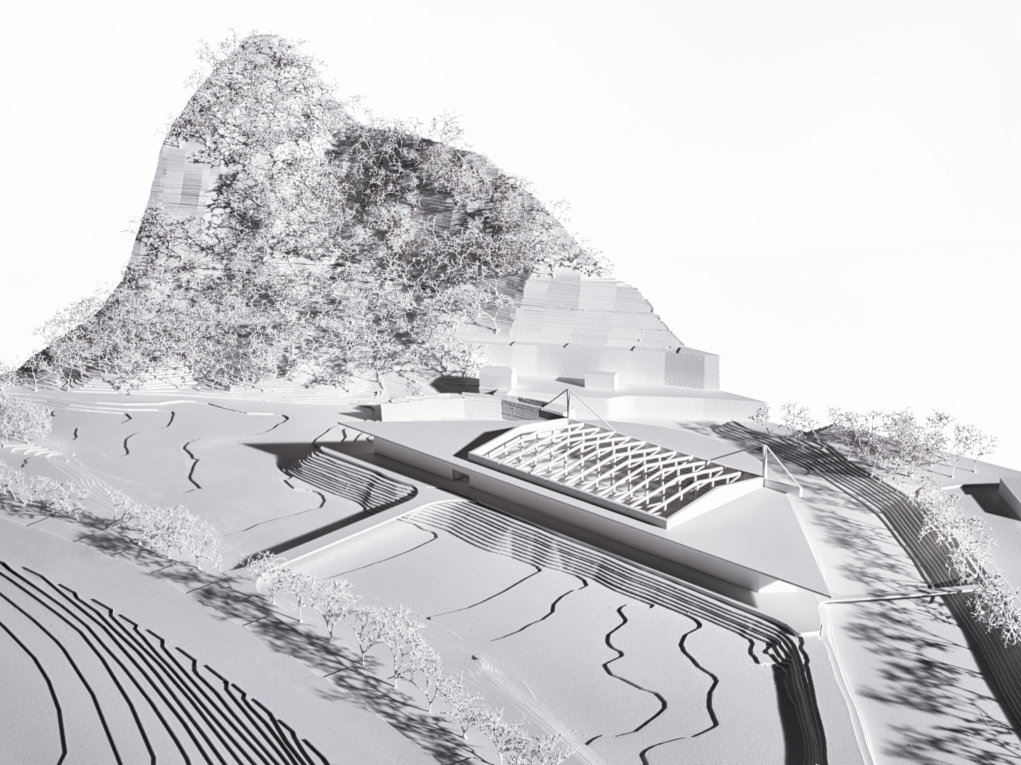 Die Wälderhalle in Andelsbuch könnte nun doch realisiert werden.