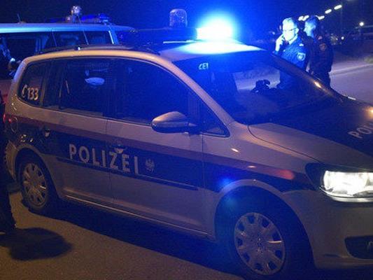 Einbrecherbanden: Elf Verdächtige befinden sich derzeit in Niederösterreich in Haft.