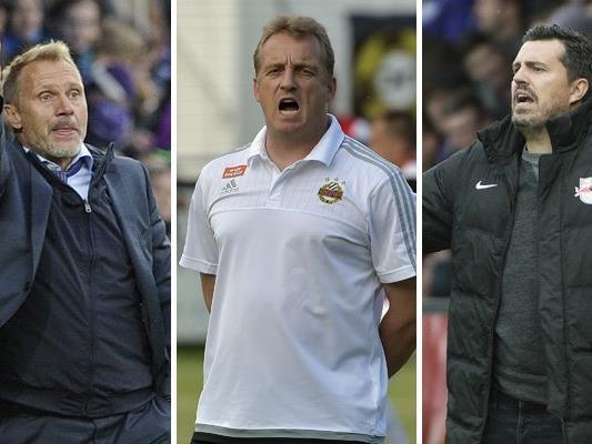 Im zweiten Teil der Trainerumfrage kommen die Coaches der Topteams der Liga zu Wort.