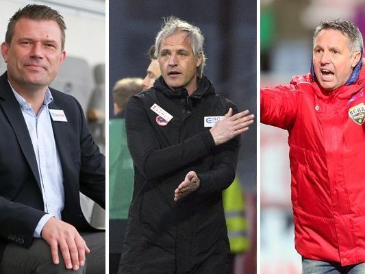 Die Bundesliga-Trainer in der großes Saisonstart-Umfrage.