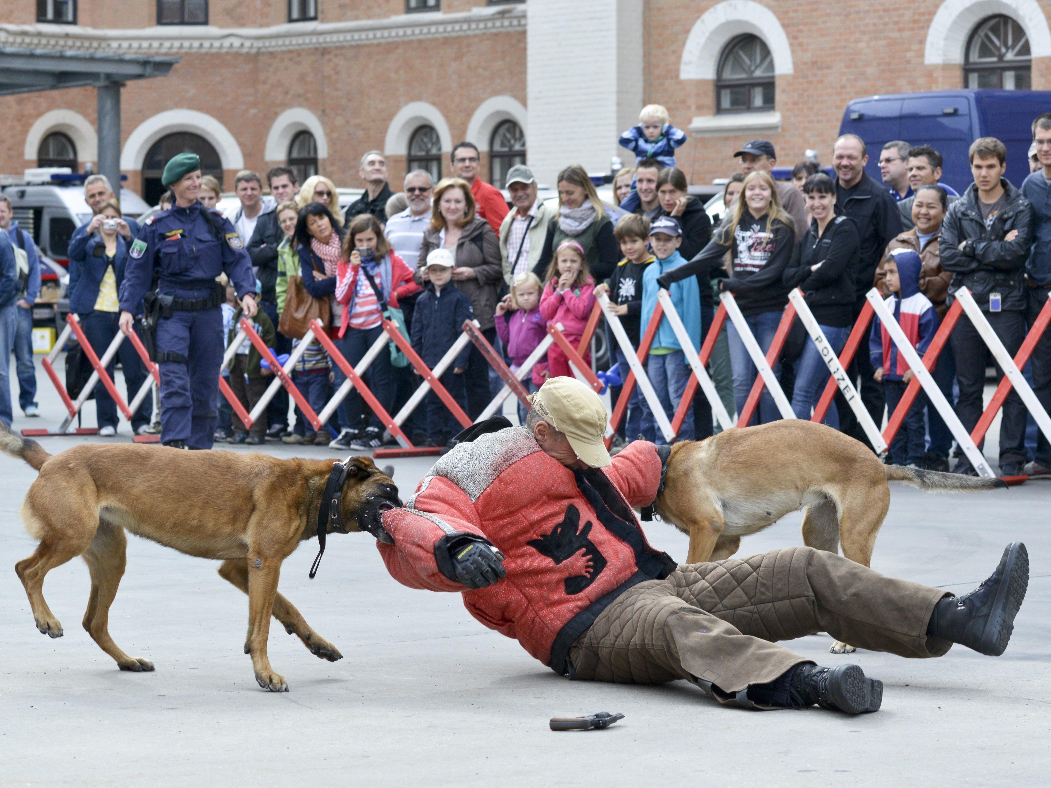 """Eine Vorführung beim """"Tag der Polizei"""" in der Rossauer Kaserne."""