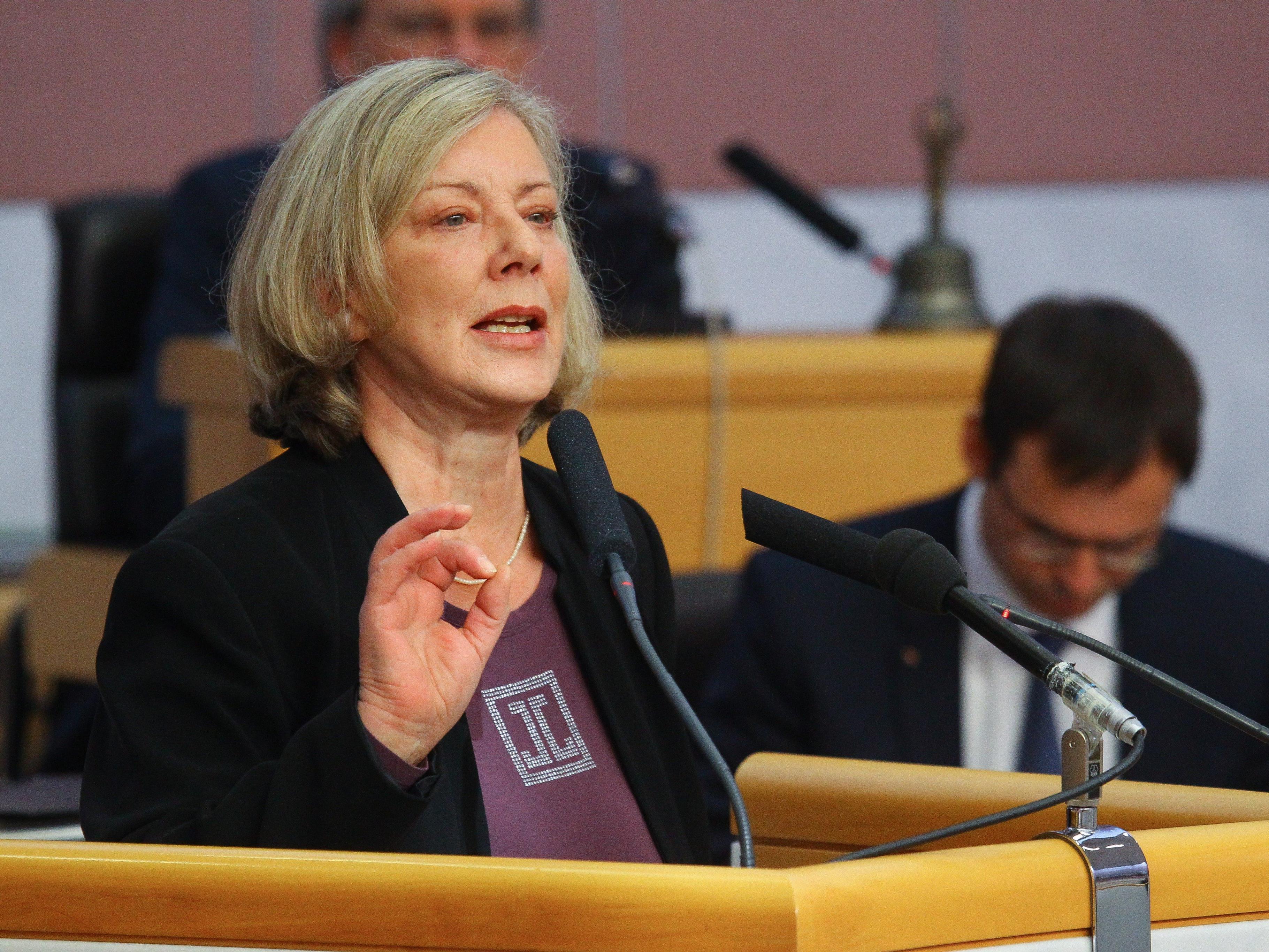Sprickler-Falschlunger übernimmt den Landesparteivorsitz