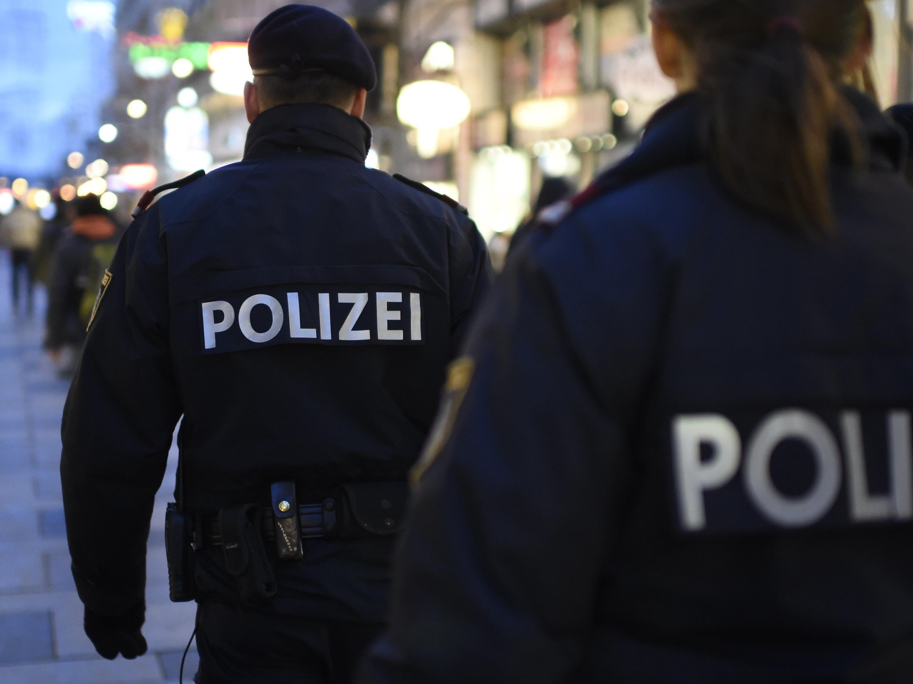 Zwei Diebe konnte in Vösendorf von der Polizei festgenommen werden