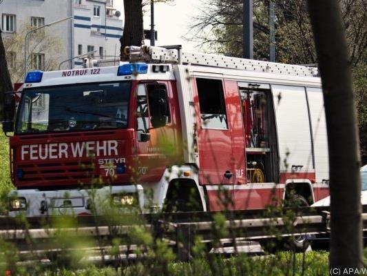 Die Berufsfeuerwehr Wien löschte den Brand.
