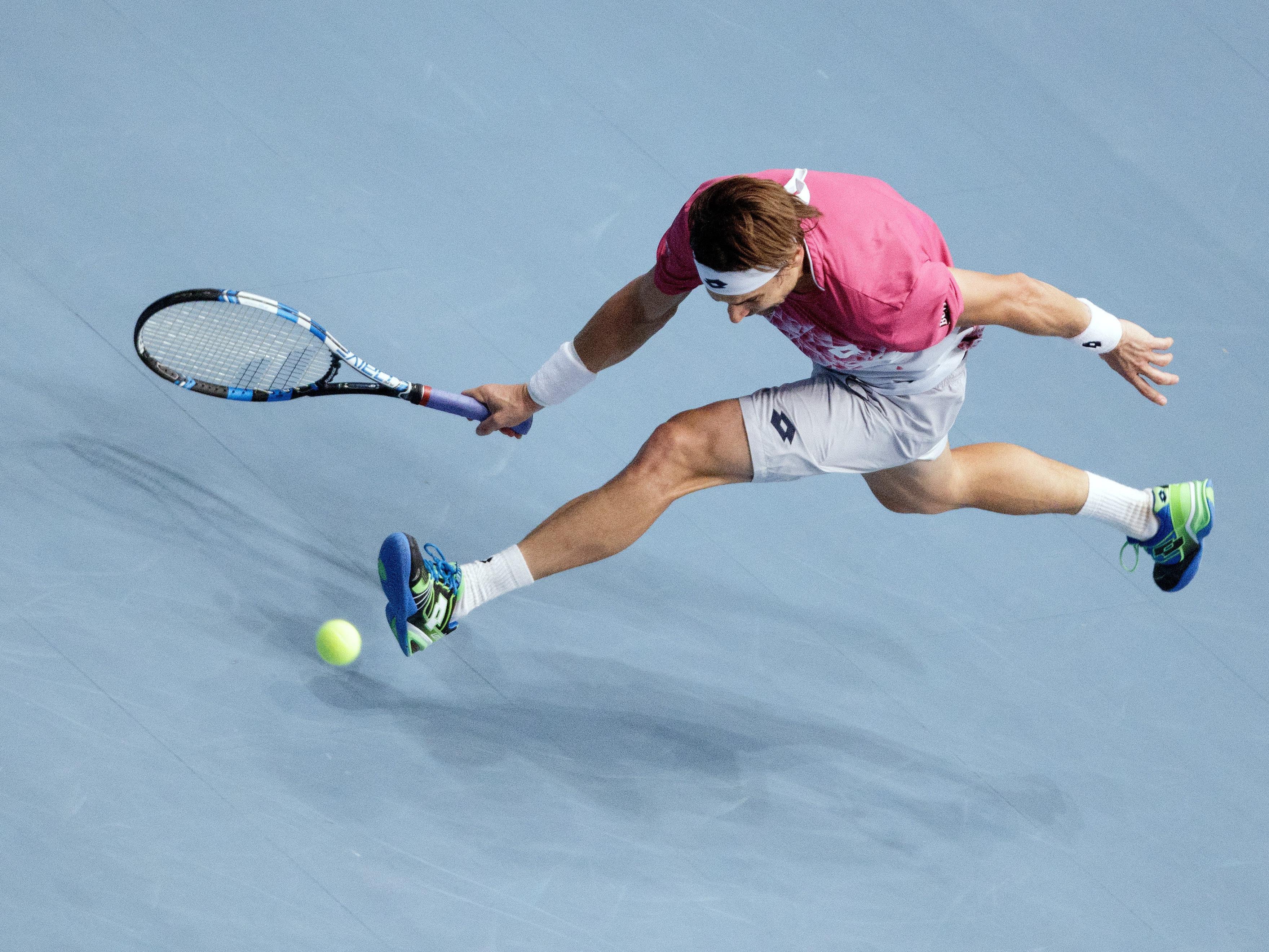 David Ferrer erkämpfte sich seinen Platz im Halbfinale mit allen Mitteln