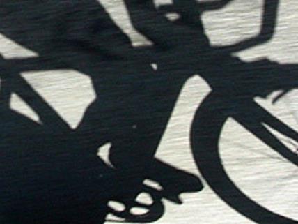 Zwei mutmaßliche Fahrraddiebe wurden festgenommen