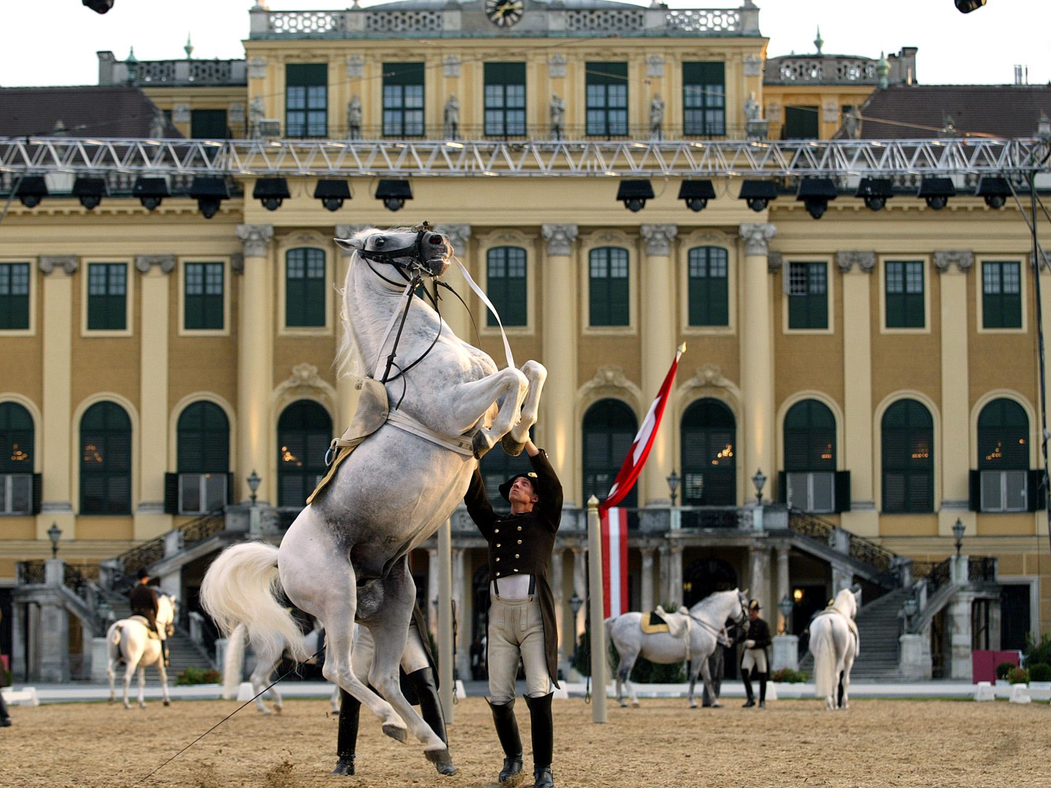 Nächtigungsrekord in Wien im Oktober 2016