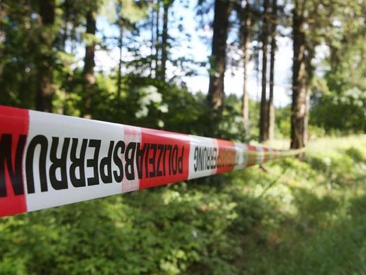 Die Leiche dürfte bereits vor mehr als einem Jahr in dem Waldstück abgelegt worden sein.